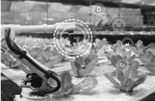 """突破机器视觉关键技术 助农业机器人""""占领""""果园、农田"""